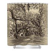 Historic Lane Antique Sepia Shower Curtain