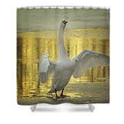 Hit It Maestro Shower Curtain