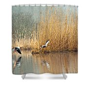 Hit The Road Shower Curtain