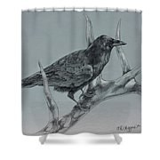 Hitchhiker Drawing Shower Curtain
