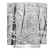 Hoar Frost Covered Trees In Forest Shower Curtain