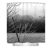 Hoar Frost On The Wood Shower Curtain