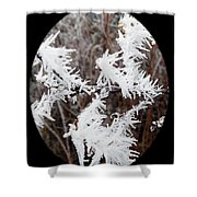 Hoarfrost 15  Shower Curtain