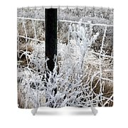 Hoarfrost 16  Shower Curtain
