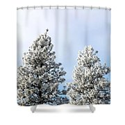 Hoarfrost 21 Shower Curtain