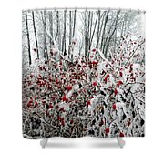 Hoarfrost 25 Shower Curtain