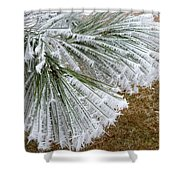 Hoarfrost 4 Shower Curtain