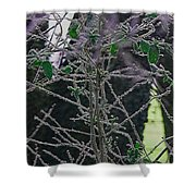 Hoars Frost-featured In Nature Photography Group Shower Curtain