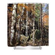 Hocking Hills Trees Shower Curtain