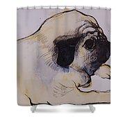 Hogarth Shower Curtain