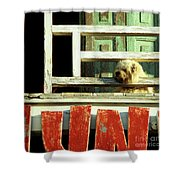 Hoi An Dog 02 Shower Curtain