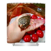 Holding A Newborn Bird Shower Curtain