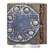 Hole Patch 2 John Muir Woods Shower Curtain
