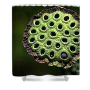 Holey Moley Shower Curtain