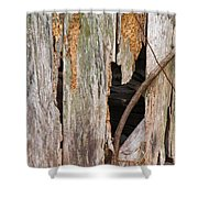 Holey Smokehouse Shower Curtain