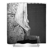 Holga Winged Figures Of The Republic Side View Shower Curtain