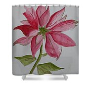Holiday Flower Shower Curtain