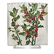 Holly Shower Curtain by Alice Bailly