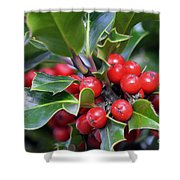 Holly Berries 2 Shower Curtain
