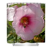Hollyhock And Bee Shower Curtain