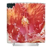 Hollywood Hibiscus Beauty Shower Curtain