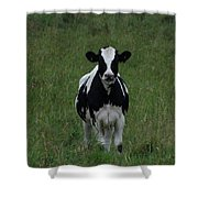 Holstein Hello Shower Curtain