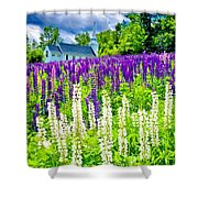 Holy Lupines Shower Curtain