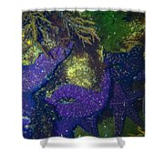 Home Of The Stars Shower Curtain