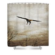 Home Safely Shower Curtain