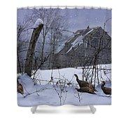 Home Through The Snow Shower Curtain