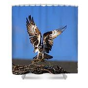 Homebuilder Shower Curtain by Mike  Dawson