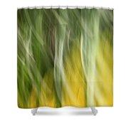Homeless Heart Shower Curtain