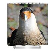 Homosassa Springs Waterfowl 21 Shower Curtain