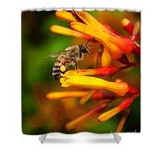 Honey Bee 4 Shower Curtain