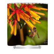 Honey Bee 7 Shower Curtain