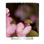 Honey Bee And Crabapple Shower Curtain