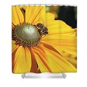 Honey Bee And Yellow Dahlia Flower Shower Curtain