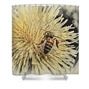 Honey Bee Meets Dandy Lion Shower Curtain