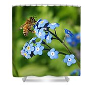 Honey Bee On Forget-me-not Flowers Shower Curtain