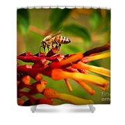 Honey Bee Profile Shower Curtain
