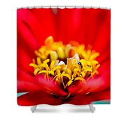 Honey Dew Breakfast Shower Curtain by Alexander Senin