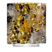 Honey Fungus Shower Curtain