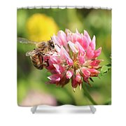 Honeybee And Clover Shower Curtain