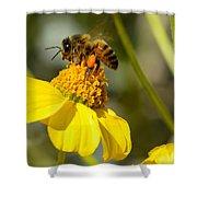 Honeybee Feasting On Nectar Of Yellow Flower Shower Curtain