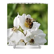 Honeybee Hands Shower Curtain