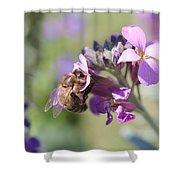 Honeybee On Purple Wall Flower Shower Curtain