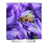 Honeybee Peeking Out Shower Curtain