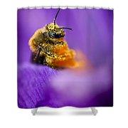 Honeybee Pollinating Crocus Flower Shower Curtain