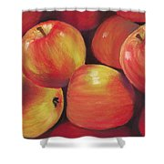 Honeycrisp Apples Shower Curtain by Anastasiya Malakhova