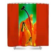 Honeysuckle Spectacular Shower Curtain